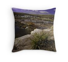 Paint Mines Throw Pillow