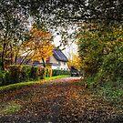 Farm Cottage by Nigel Bangert