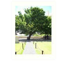 Tree of Memories Art Print