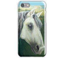 Rocco the Renaissance Horse iPhone Case/Skin