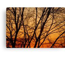 Jersey evening Canvas Print
