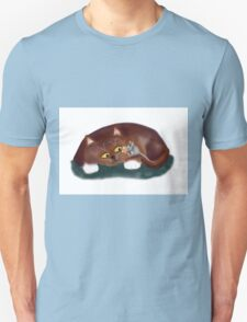 Cat, Do You want a Piece of Popcorn? T-Shirt