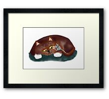 Cat, Do You want a Piece of Popcorn? Framed Print
