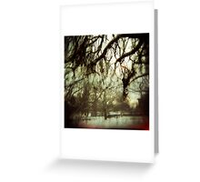 Dreams in the Hiding Tree Greeting Card