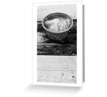 Bowl of Twine DOS Greeting Card