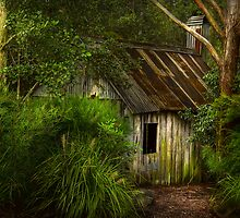 The Slab Hut No 2 by Rosalie Dale
