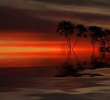 """""""Reflected Silhouettes"""" by debsphotos"""