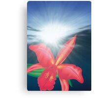 Orchid Flower in Sunrise Canvas Print