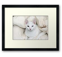 jules my bedroom Framed Print