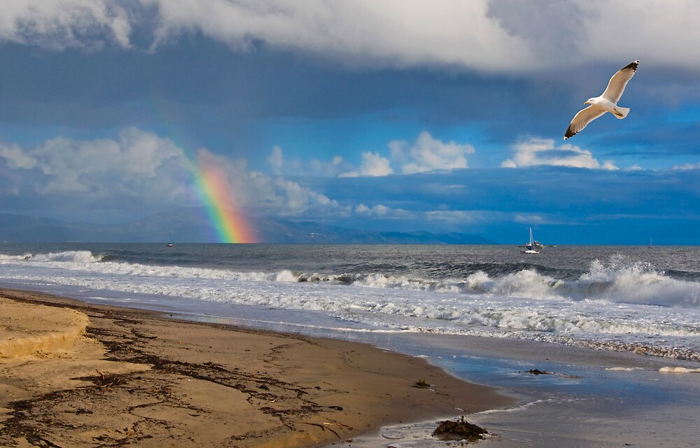 East Beach, Santa Barbara by Eyal Nahmias