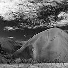 Uluru in B&W by Steven Pearce