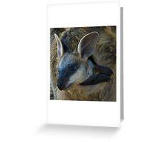 Swamp Wallaby Series - Part 3 - Peek a Boo Greeting Card