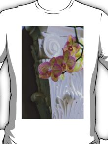 An Order Of Corinthian...For Here T-Shirt