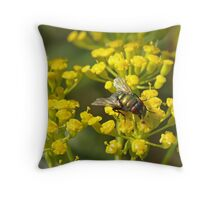 Fly on fennel flowers Throw Pillow