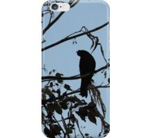 Evening Crow iPhone Case/Skin