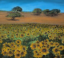 SUNFLOWER FIELD by ISABEL ALFARROBINHA