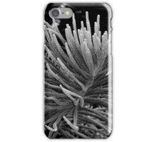 Norfolk Island Pine iPhone Case/Skin