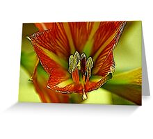 Inside the Lily Greeting Card
