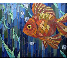 under the sea with a fish like me Photographic Print
