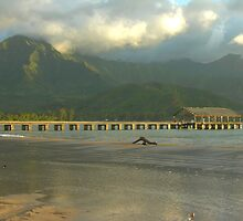Evening Light, Hanalei Pier by Stephen Vecchiotti