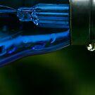 Blue bulb by micklyn