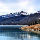 Abraham Lake by Leslie van de Ligt