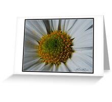 Pollen Power Greeting Card