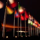 Flags of the world by Michael Olive