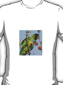 Great Fruit! T-Shirt