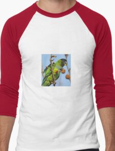 Great Fruit! Men's Baseball ¾ T-Shirt