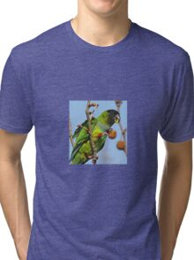 Great Fruit! Tri-blend T-Shirt