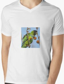 Great Fruit! Mens V-Neck T-Shirt