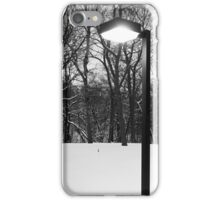 Wintry Incandenscence iPhone Case/Skin