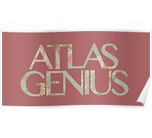 Atlas Genius Vintage Floral Print Poster