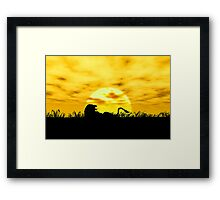 Sunset Lion Framed Print