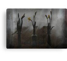 Dafs 135 Canvas Print