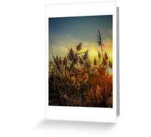 Get Your Glow On Greeting Card