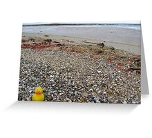 Duckscovering Rickett's Point Greeting Card