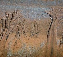 Sand Trees - Beach Patterns by Barbara Burkhardt