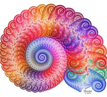 'Echo Spiral' by Scott Bricker