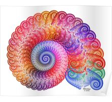 'Echo Spiral' Poster