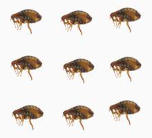 Huge F-word, it's some fleas!  by trashdog