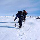 Cutting Ice Steps by Braedene