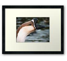 Goose II Framed Print