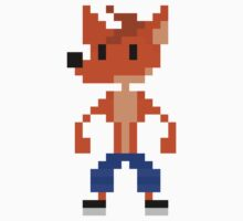 Crash Bandicoot Pixel Kids Clothes