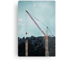 Crane Metal Print