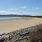Bakers Beach - Tasmania by frootjoose