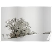 Trees in the mist and snow Poster