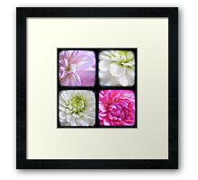 Dahlias Through The Viewfinder (TTV) Framed Print