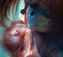 loving mum by sully